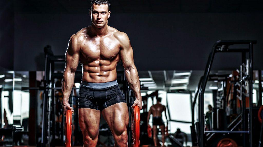Ciclos de propionato de testosterona
